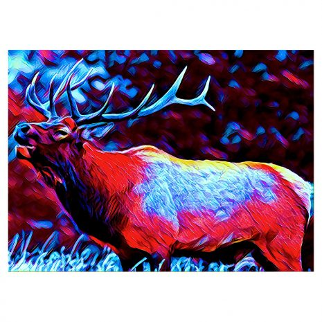 Artist Series Elk Sticker