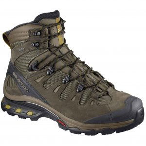 SALOMON Men's Quest 4D 3 GTX Hiking Boot