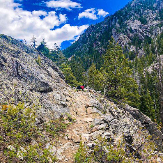 Trailhead Conditions Report 5/29/2020