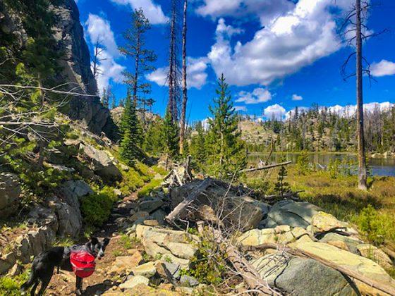 Trailhead Conditions Report 6/24/2020