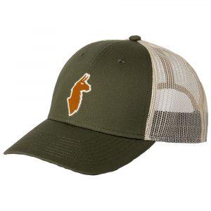 COTOPAXI The Llama Trucker Hat, Spruce