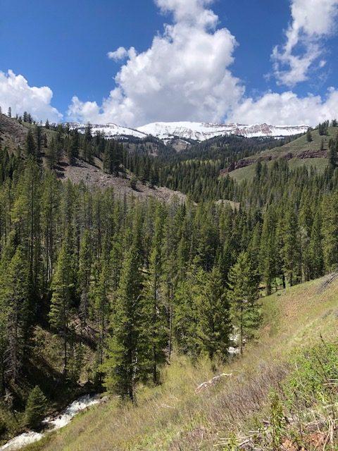 Trailhead Conditions Report 6/5/2021