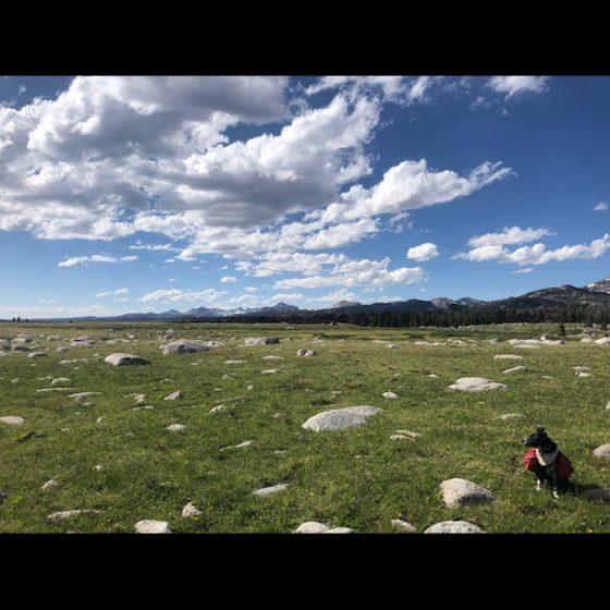 Trailhead Conditions Report 7/15/2021